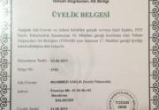 yetki5